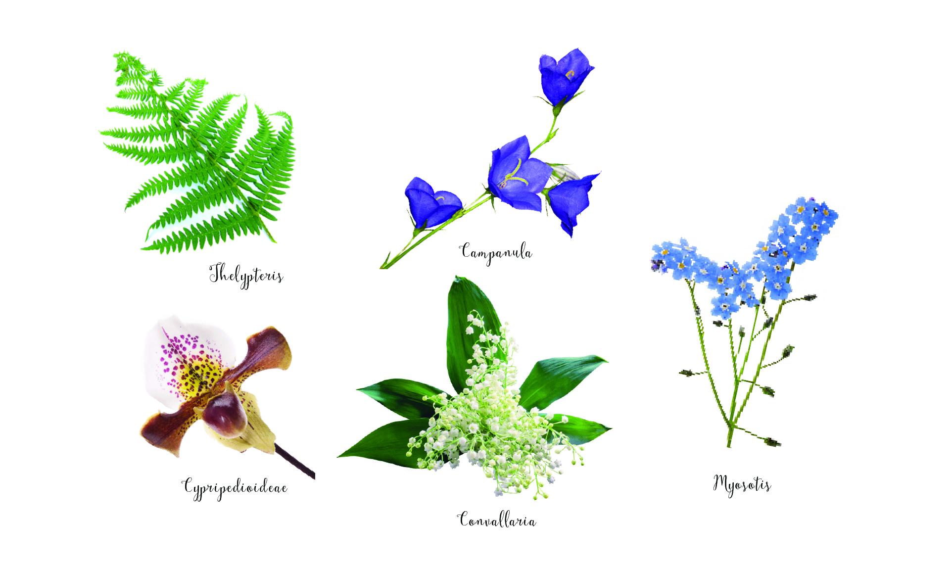 , Csokor és dekoráció- Így válassz virágot a három leghíresebb stílus alapján!