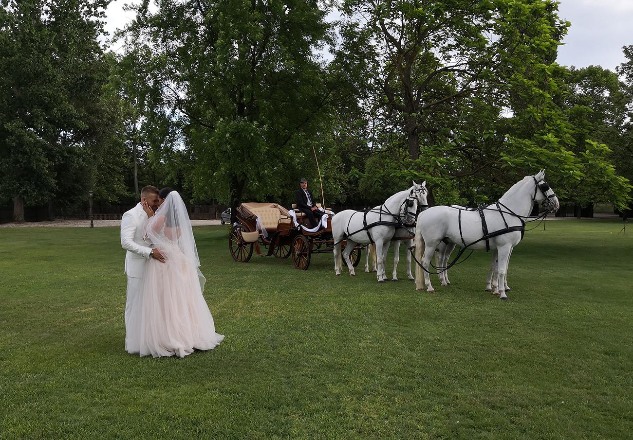 tradicionális esküvői helyszín, Tradicionális esküvői helyszín, ahol a magyaros hagyományok találkoznak a modern esküvőkkel – Mondj igent a Biczó Csárda & Lovaspanzióban!